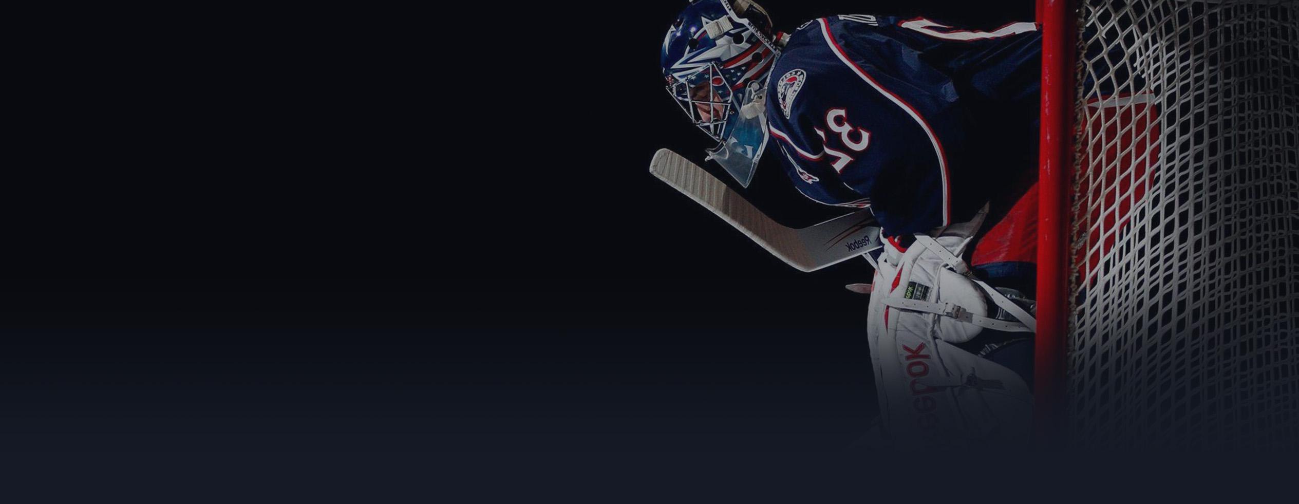 hokej-slide